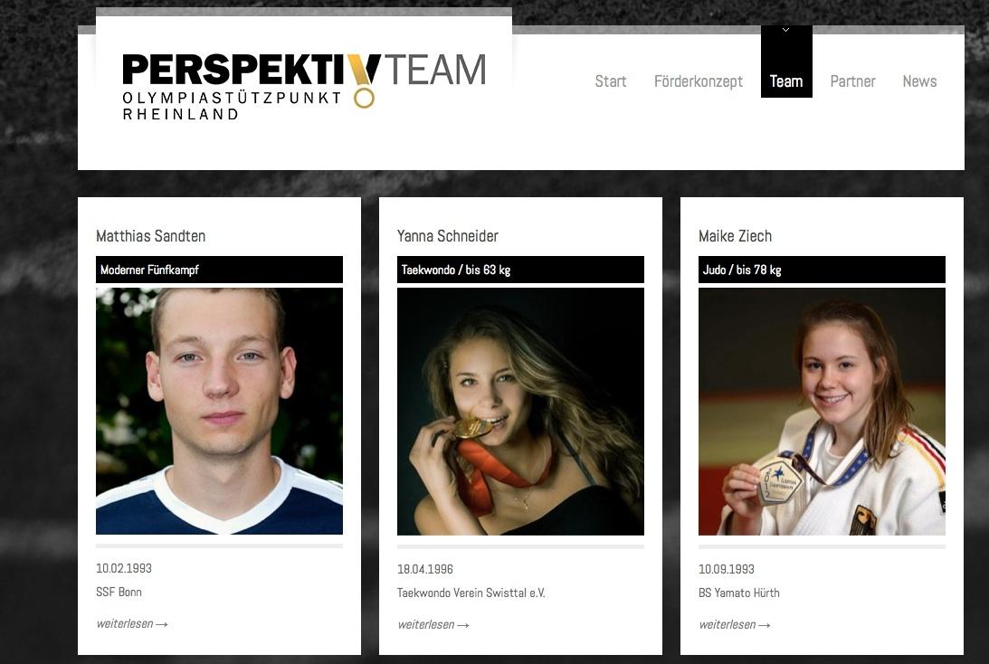 Screenshot: www.perspektiv-team.de