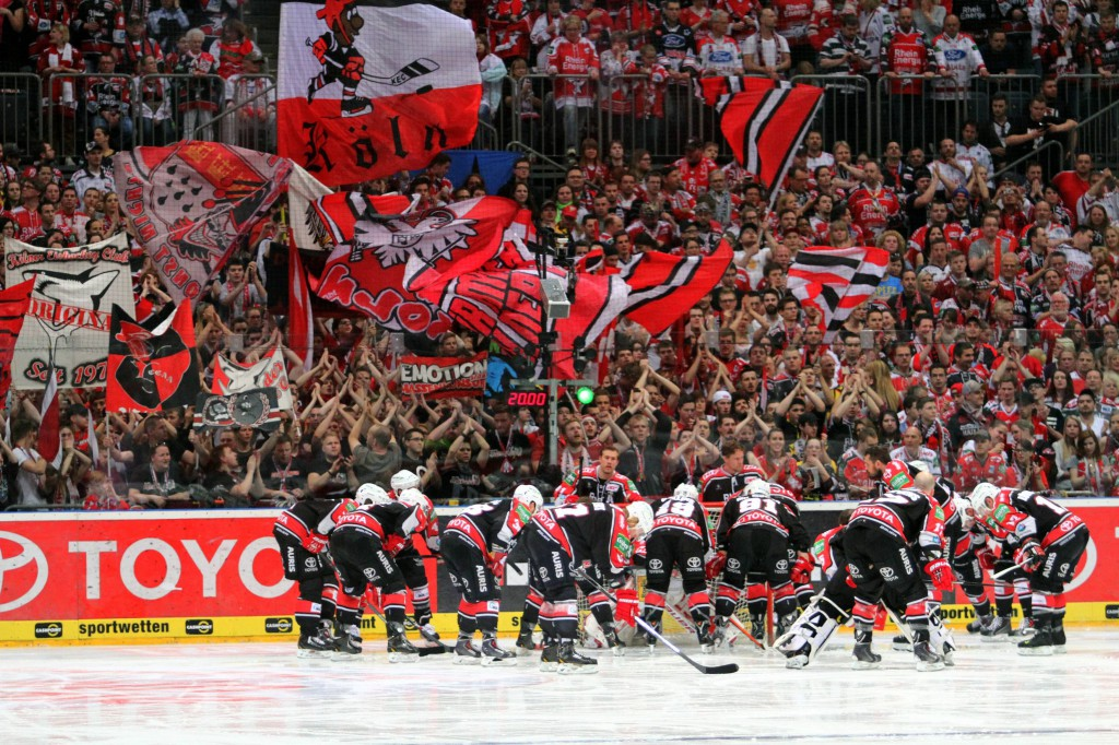 Haie-Fans mit Dauerkarte haben ein Vorkaufsrecht für die Spiele der Champions Hockey League Foto: IMAGO