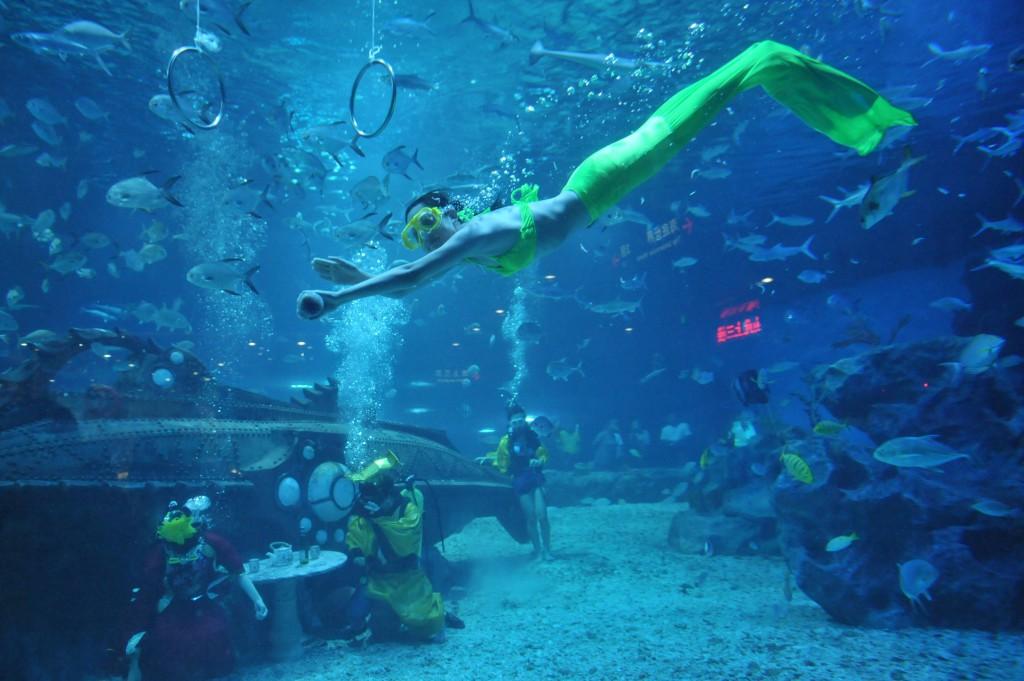 Gibt Es Echte Meerjungfrauen